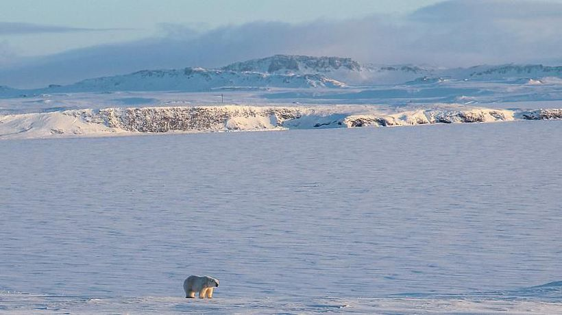 Arctic should remain an area of cooperation, not conflict, says MEP