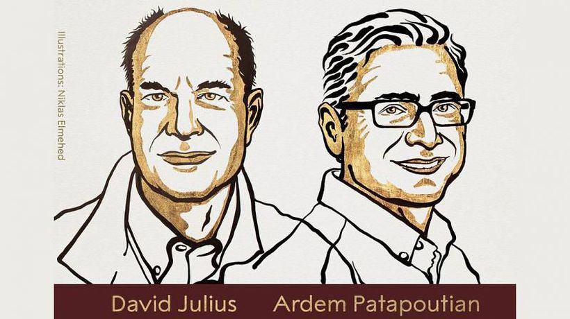 Nobel Prize in Physiology or Medicine awarded to David Julius and Ardem Patapoutian