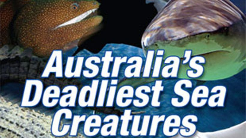 Grainger's World - Australia's Deadliest Sea Creatures