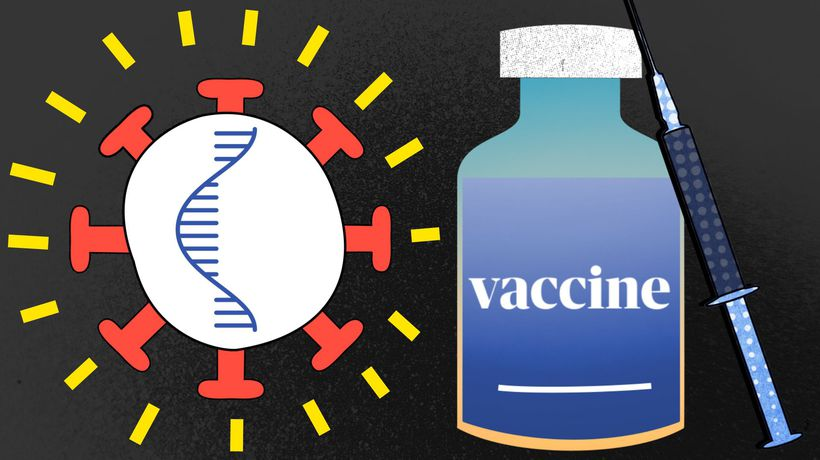 What's in a vaccine and what does it do to your body?