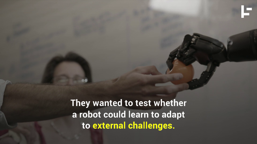 How 'Tough Love' From Humans Helps Robots to Learn