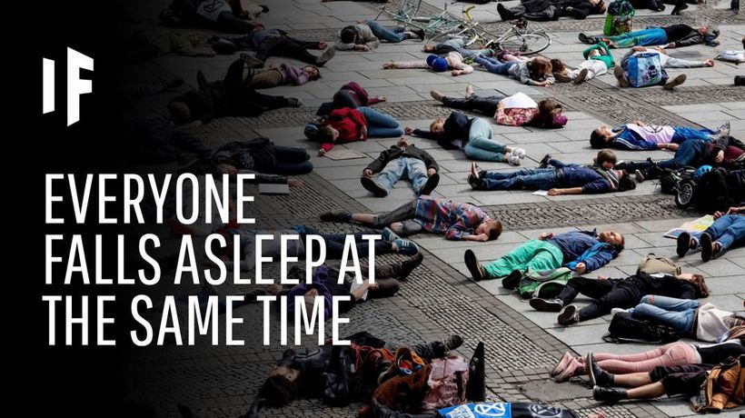 What If Everyone Fell Asleep At The Same Time?
