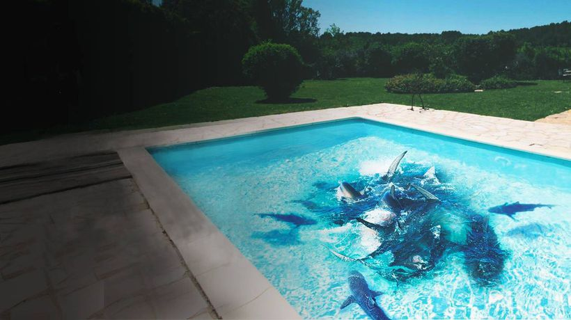 What If You Fell Into a Pool Full of Sharks?