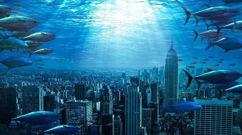 What If All Life on Earth Lived in the Oceans?