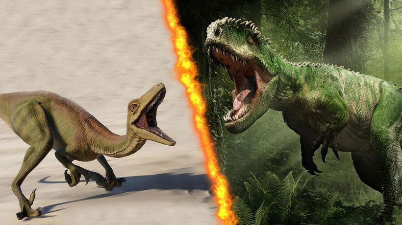 What If the Giganotosaurus Battled the Troodon?