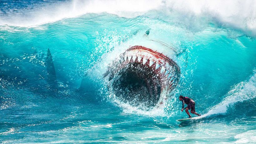 What If You Were Attacked by a Megalodon?