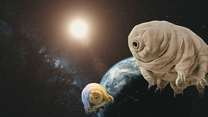 What If We've Already Made First Contact With Aliens?