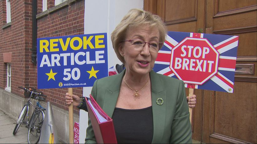 Mr Stop Brexit gatecrashes Andrea Leadsom