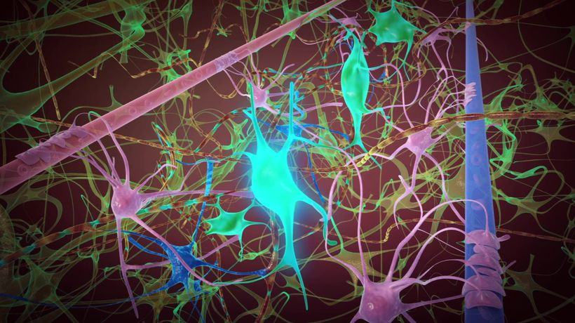 Scientists find neurons can send signals wirelessly to each other