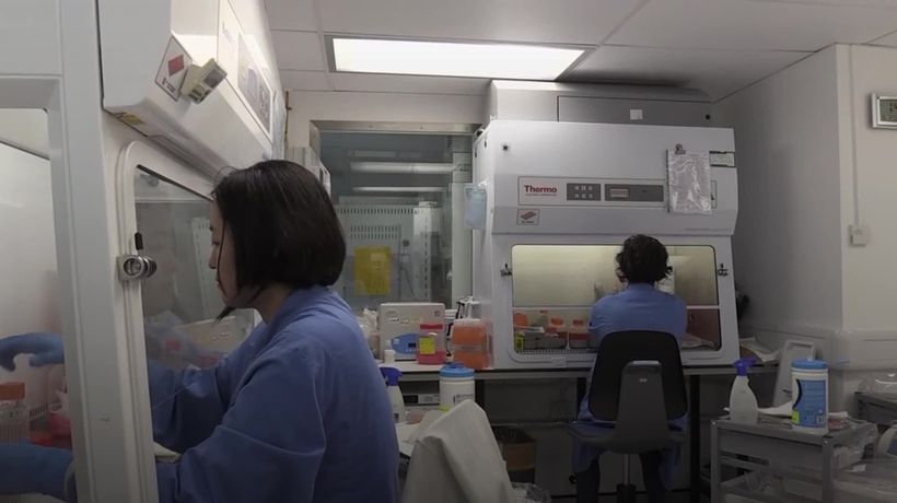What is an antibody test?