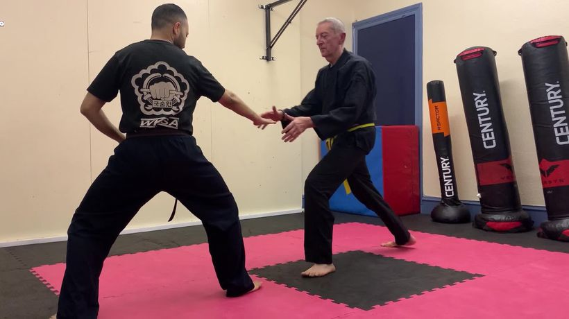 Martial arts pensioner swaps lamb chops for karate chops