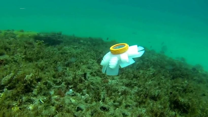Jellyfish robots could be 'guardians of the oceans'