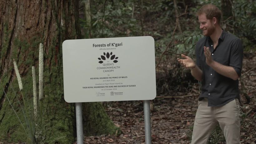 Prince Harry jokes about his 'highly skilled' plaque unveiling on Fraser Island