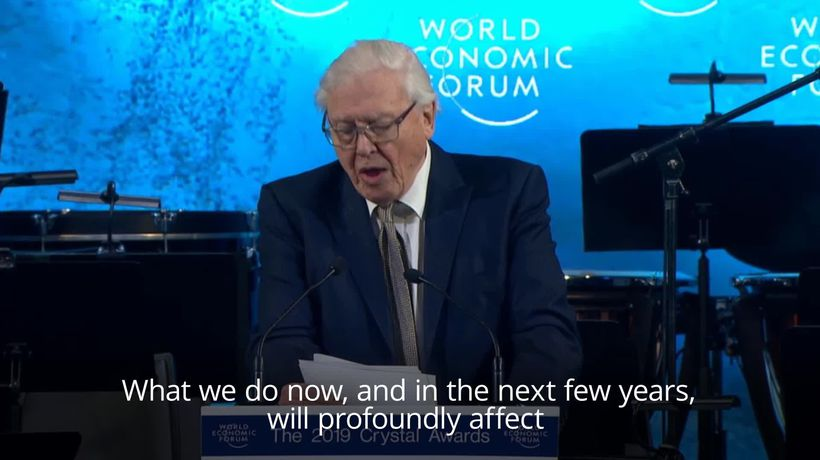 Sir David Attenborough: What we do now affects the next few thousand years