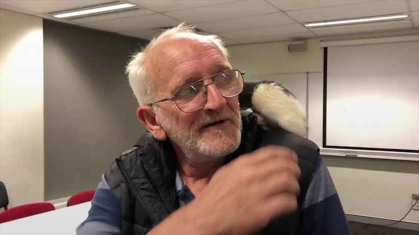 A homeless man and his pet rat have been reunited