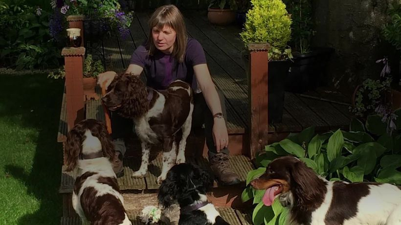 Former policewoman sets up an Airbnb for dogs