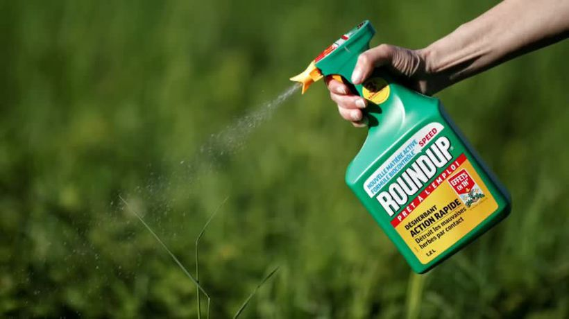 Bayer faces fourth U.S. Roundup cancer trial in Monsanto home court