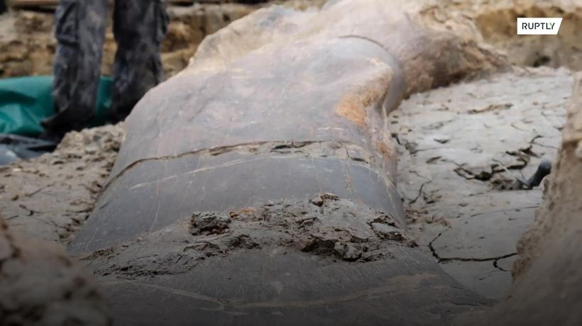 Archaeologists uncover giant 140 million-years-old dinosaur bone in France