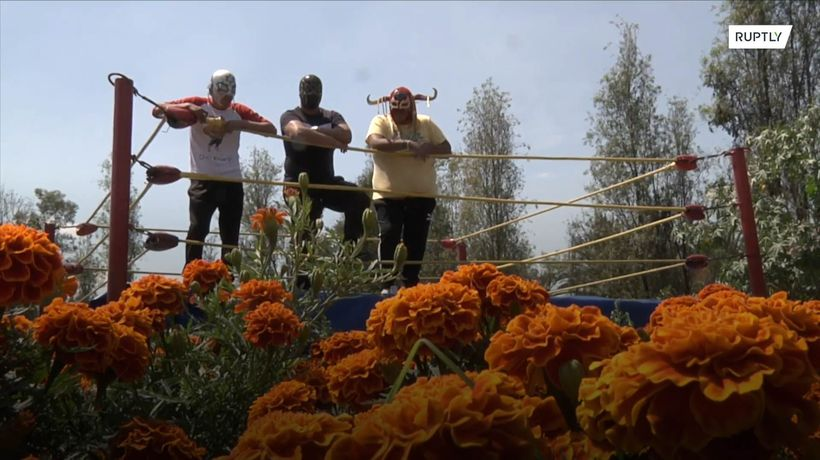 Mexican masked wrestlers grow marigold to survive COVID hardship