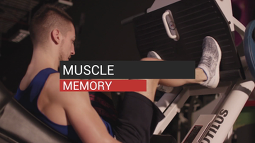 Muscle Memory and Working Out