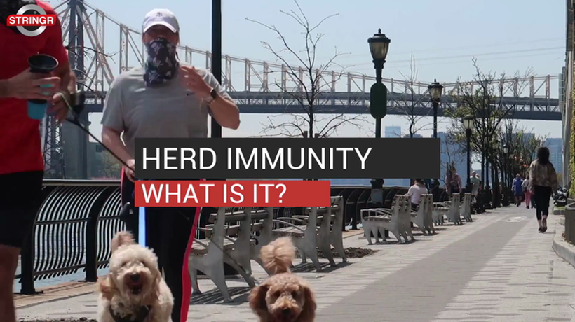 Herd Immunity What Is it?