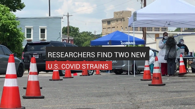 Researchers Find Two New U.S. COVID Strains