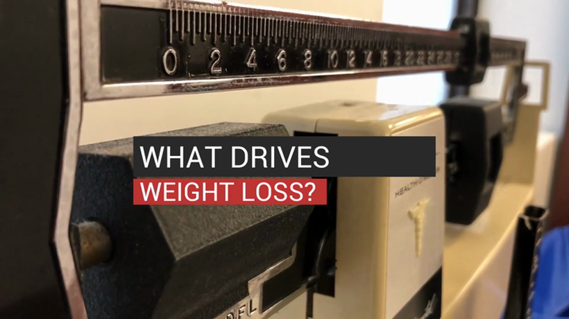 What Drives Weight Loss?