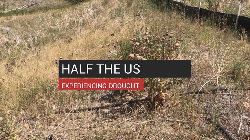 Half The US Experiencing Drought