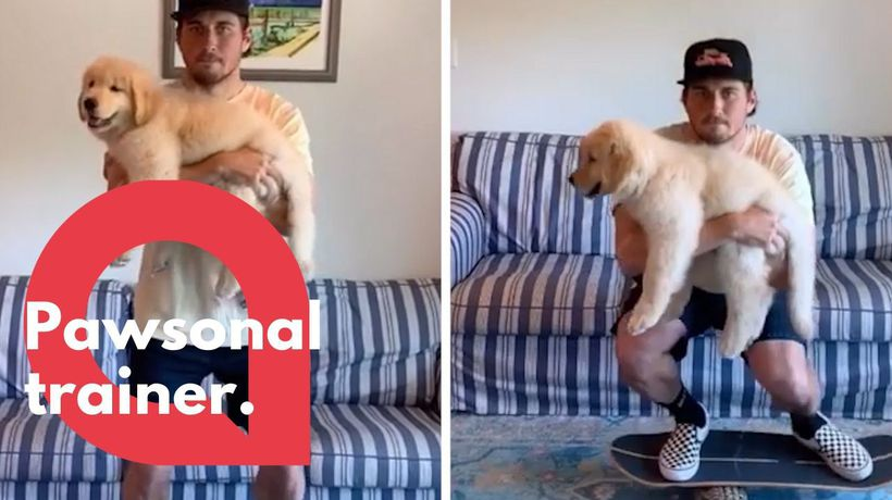 Puppy helps to keep his owner fit during quarantine