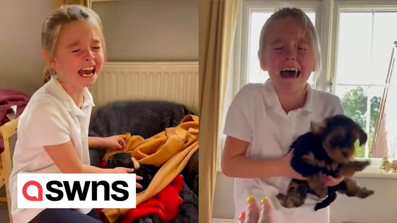 9-year-old bursts into tears of joy after her mum surprises her with puppy