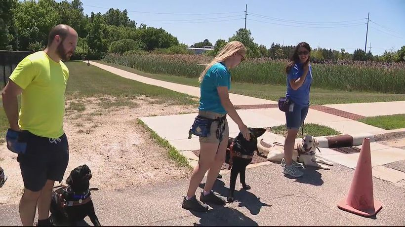 Leader Dogs for the Blind need help getting dogs adopted and trained