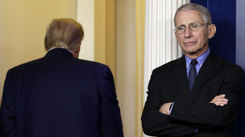 Awkward: How Fauci Describes Working Under The Trump Administration