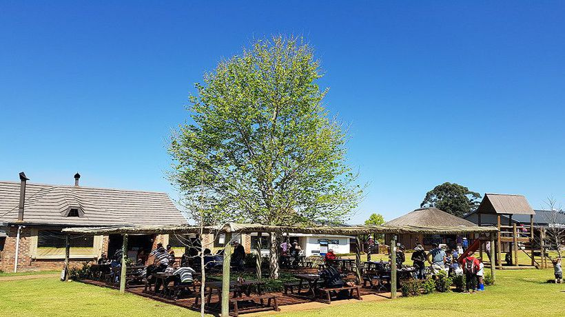 Have a farm-fresh experience just 2-hours outside of Durban
