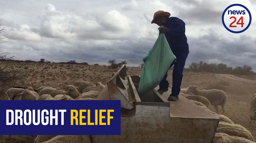 WATCH | Northern Cape farmers battle to survive catastrophic drought