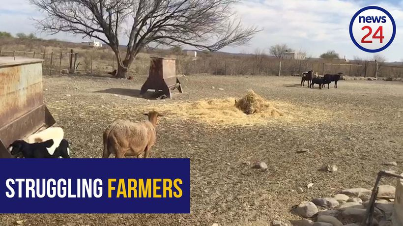 WATCH | No end in sight for the Northern Cape's disastrous drought
