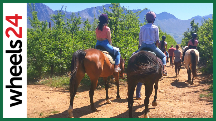 Horseback riding with Ford's Mustang in Tulbagh