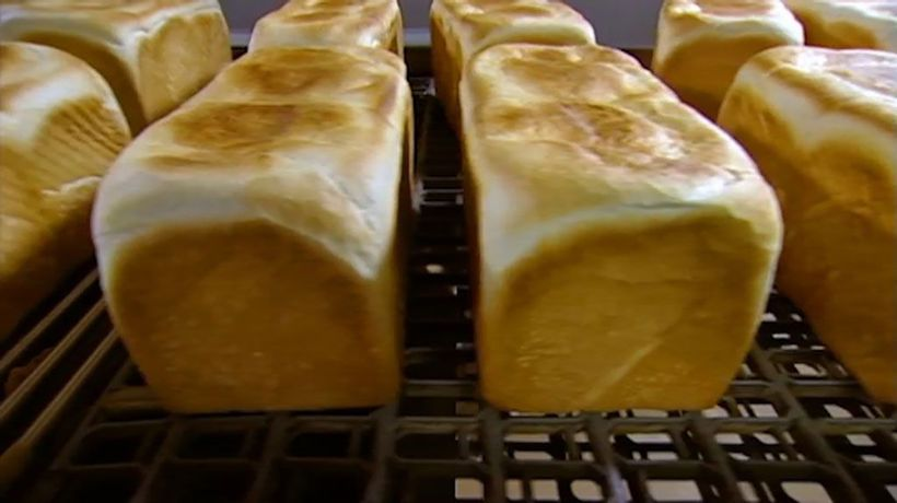 What's Really In Our Food? - Bread and Butter