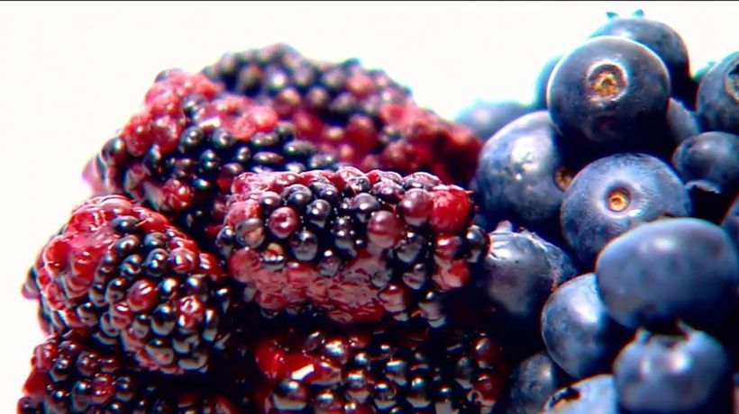 What's Really In Our Food? - Berries