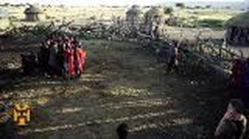 A Maasai Ceremony