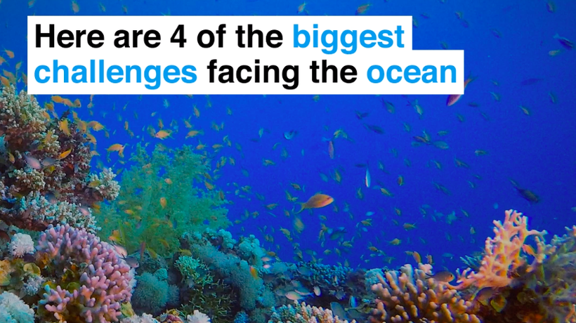 Here are 4 of the biggest challenges facing the ocean