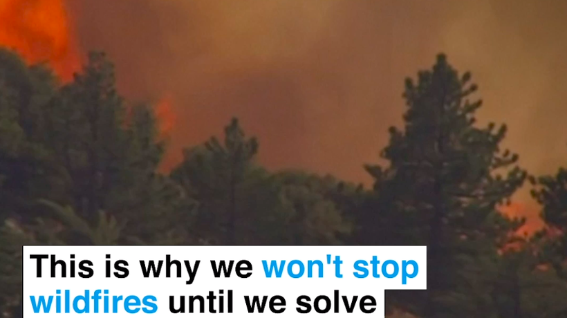 This is why we won't stop wildfires until we solve climate change