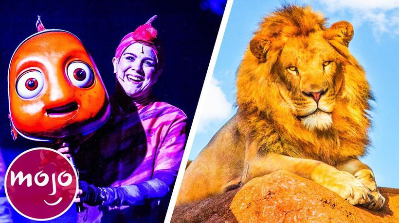 Top 10 Ultimate Animal Kingdom Attractions