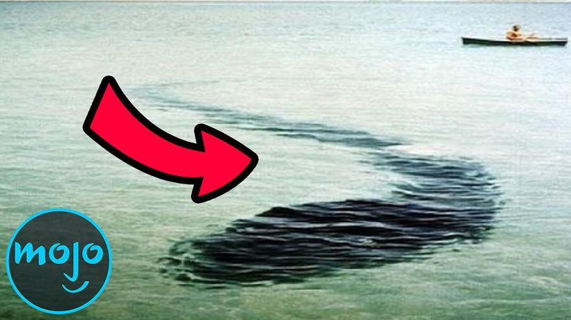 Top 10 Creepiest Sea Monster Sightings of All Time