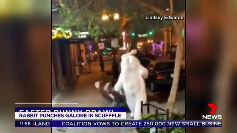 Florida police forced to break up brawl with Easter bunny