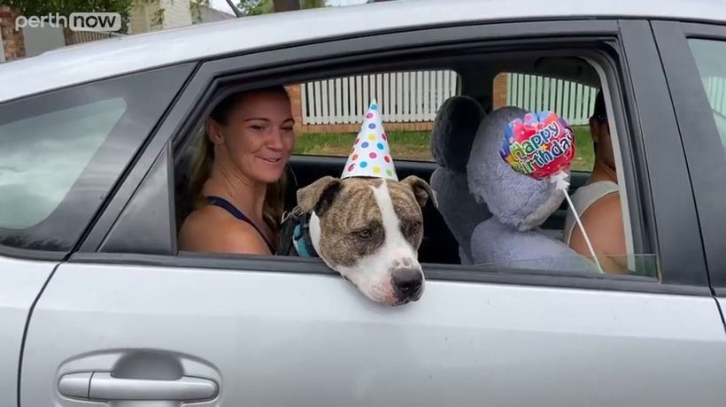 Three-year-old gets incredible community birthday drive-by party