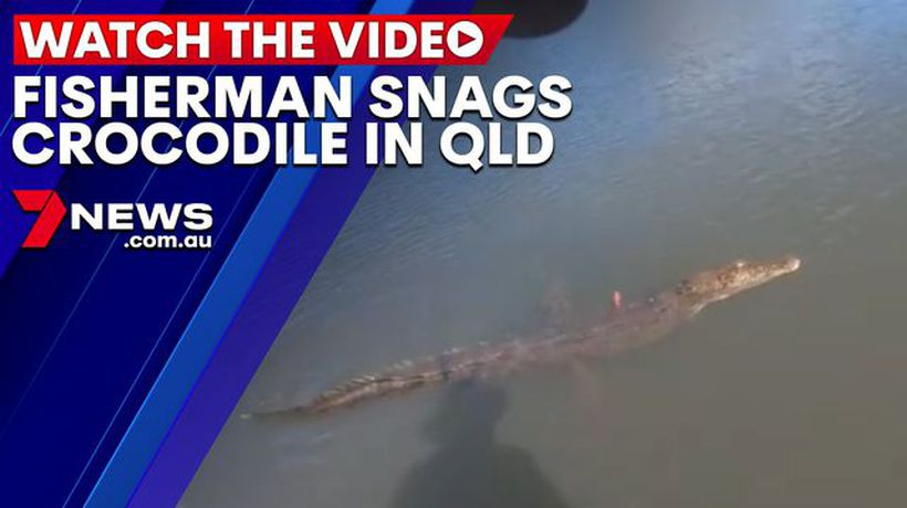 Fisherman captures moment he snagged a crocodile