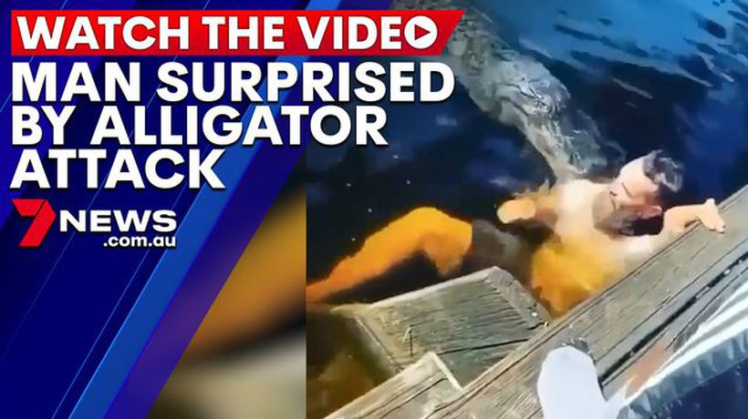 Man swims with alligator and is surprised when it attacks