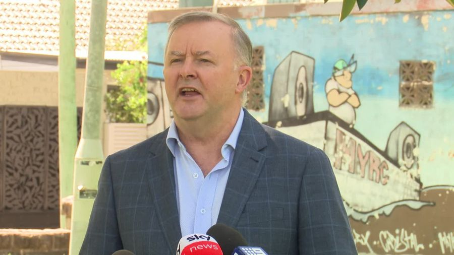 Albanese says Morrison misled public and parliament on sports rorts