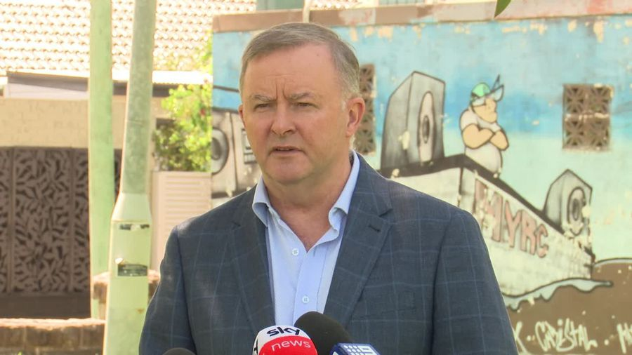 Albanese backs travel ban extension