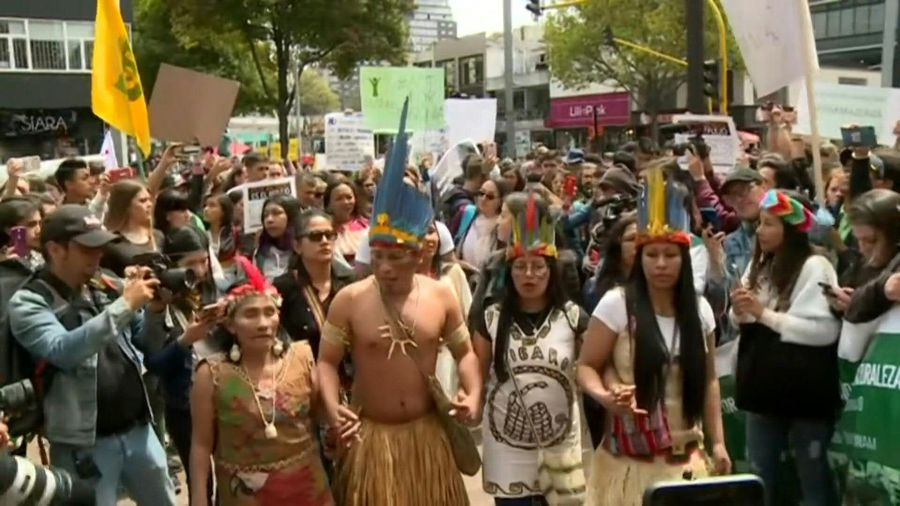 Protest in Bogota against damage to the Amazon rainforest